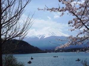 富士山と桜と河口湖と・・・