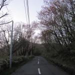 唐松平までの道1
