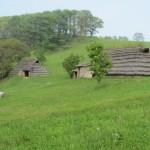わらぶき屋根の集落
