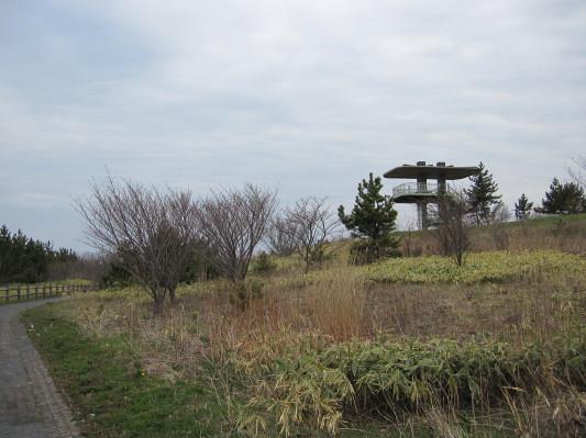 白鳥湾展望台 散策路3