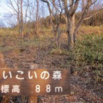 母恋富士 登山
