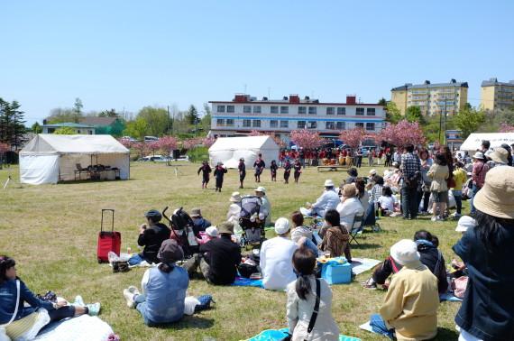 白鳥台北公園の桜まつり2012年