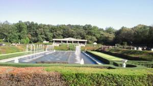 植物園のバラ園